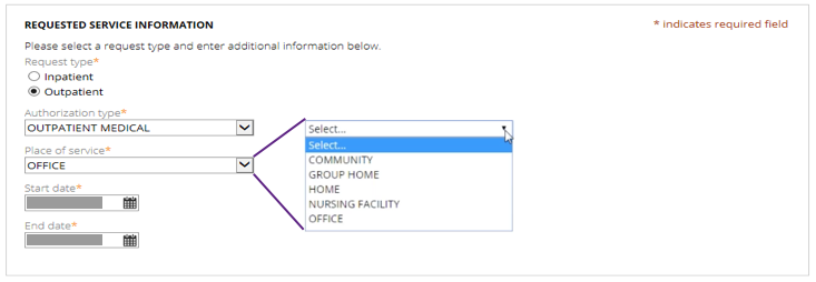 Image of Request Type Step and Place of Service Dropdown Options of Authorization Request Guided Process Before Usability Test